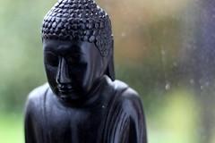Wooden Buddh-en