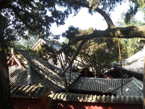 pretty temple roofs