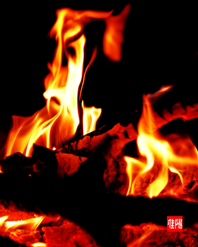 D80-CHI_Bonfire02-2010_09-25B