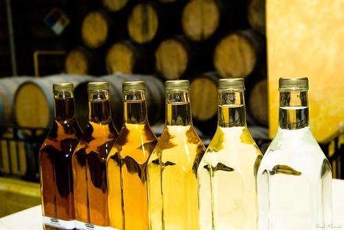 Los colores del Tequila