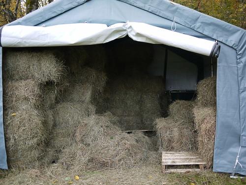 Hay's in