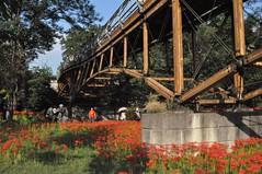 Aiai Bridge