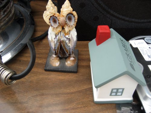 Shell owl and foam house