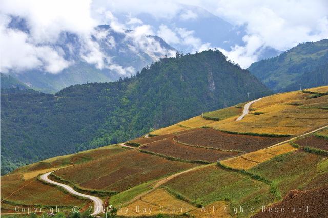 Magical Shangrila Landscape