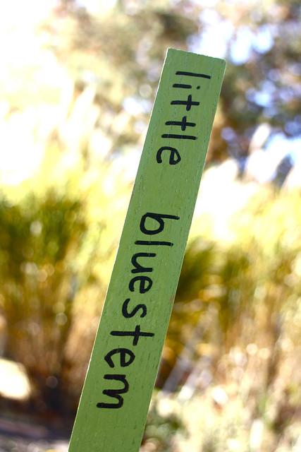 prairie markers - 6