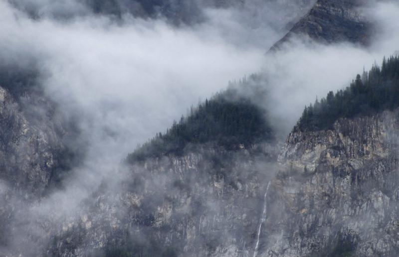 Fog Cover