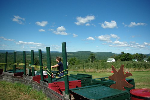 Beautiful Day - for slinging rotten apples!
