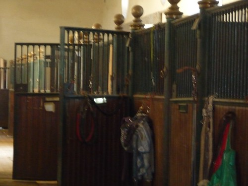 Interior Polo Stables