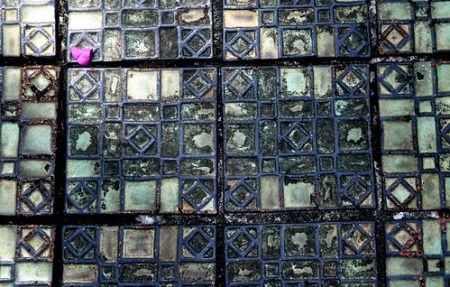 Tiles and Flower Petal Next to Old Pool at Ringling Museum, Sarasota, Fla.