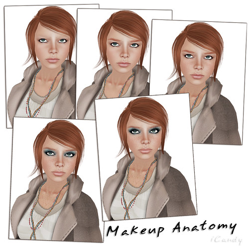 Makeup Anatomy