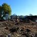 Brockwood Park School Pavilions Project - Clear Site (262/365)