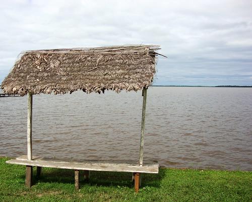 """Foto de la Laguna Suárez, en Trinidad. Incluida en el libro """"No volveré a querer. La historia de Los Taitas del Beni"""" del autor boliviano Edson Hurtado"""