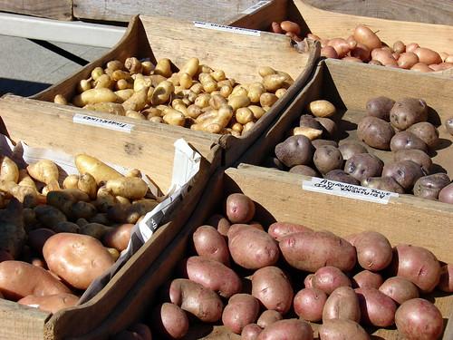 potato mania