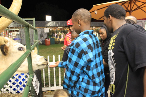 Chowan County Fair - Petting Zoo - Kids with Longhorn