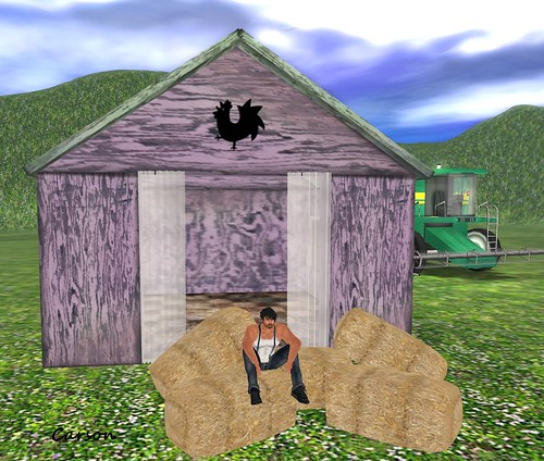 Before Sleep Little Barn and Hay 4 pose
