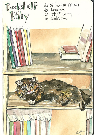 20100824 Bookshelf Kitty Watercolor Sketch