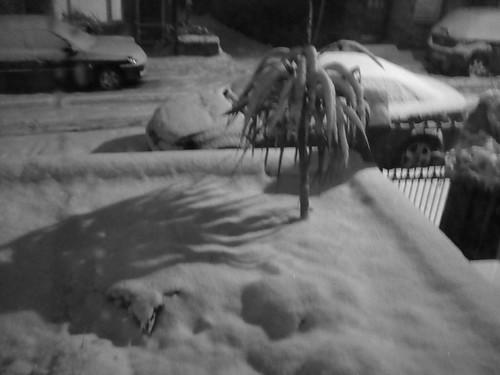 101130 - snow again