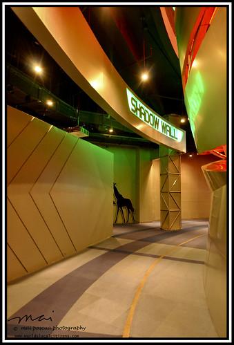 Nido Discovery Center229 copy