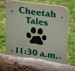 Cheetah Tales Sign