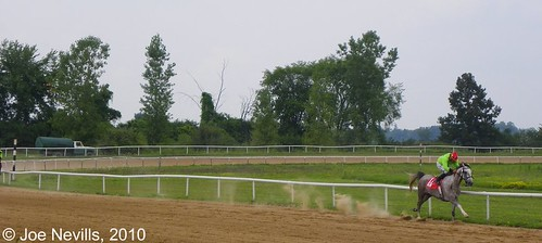2010 Michigan Arabian Juvenile Stakes