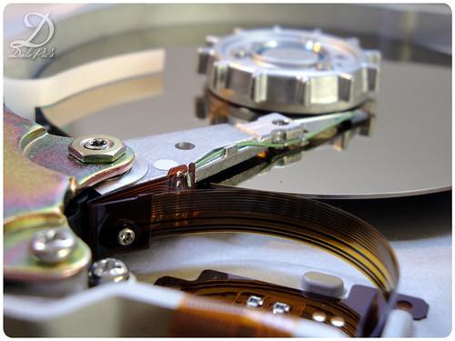 HP Hard Disk 1