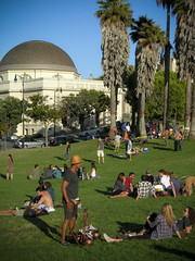 herbed-chocolate truffle seller at Dolores Park