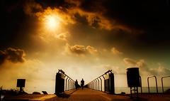 El Pont ... (serie)