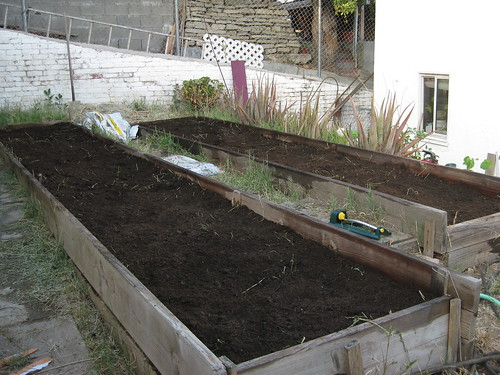 Garden 4: Composted manure layer