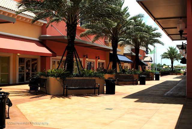 The Palms at Town and Country