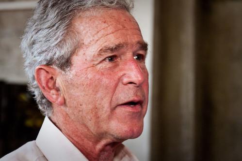 Bush-Better