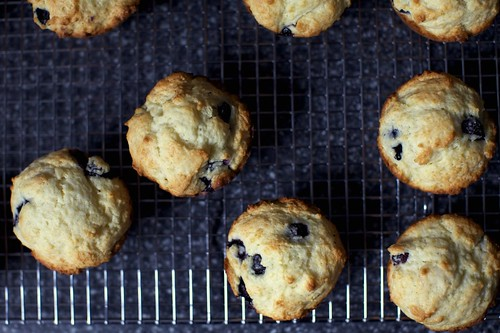 blueberry muffins, craggy tops