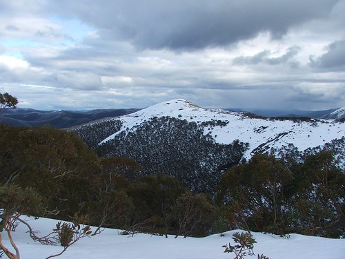 Winter On Mt. Hotham, Australia