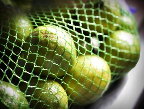 Frozen Watermelon Basil-Lime Bars