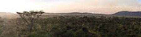 Panorama Serengeti