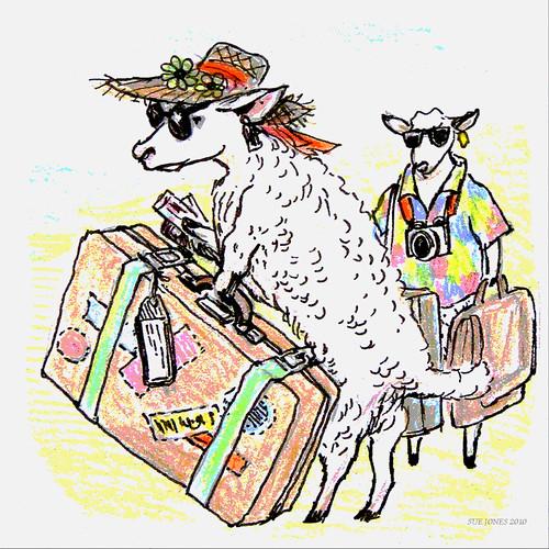 Where Do Sheep Go On Holiday?