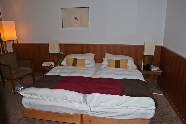 The Great Bed of Budapest