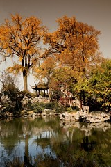 Suzhou Chinese garden:lingering garden