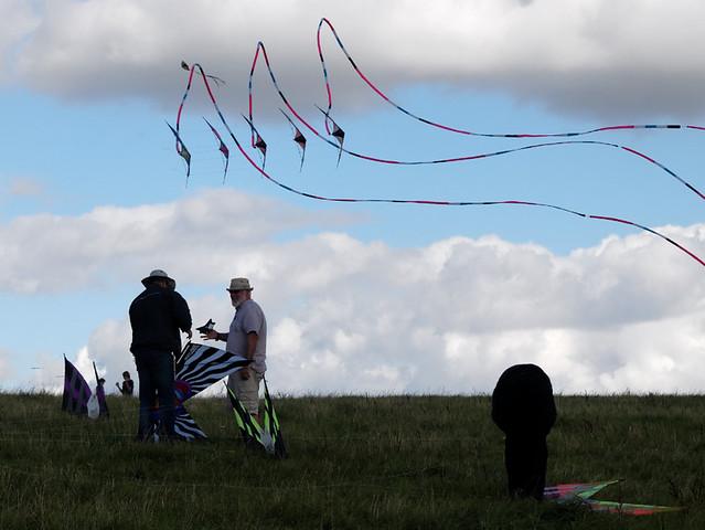 Eggerdon Hill Kite Festival 2010_1
