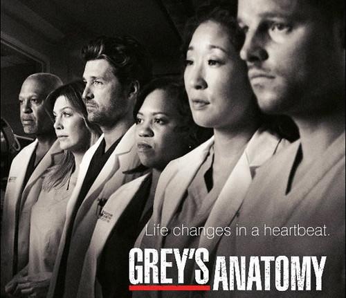 grey-anatomy-afiche-oficial-2010