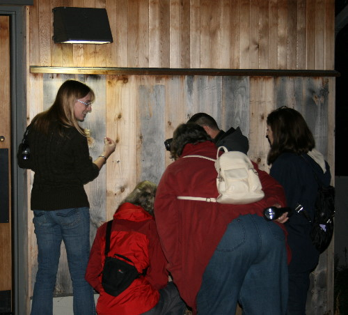 Moth night for rare Charitable Research Reserve