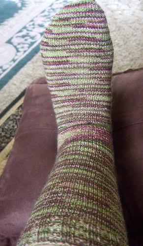 Bendigo sock 1