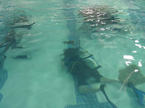 Diving Mermaid...