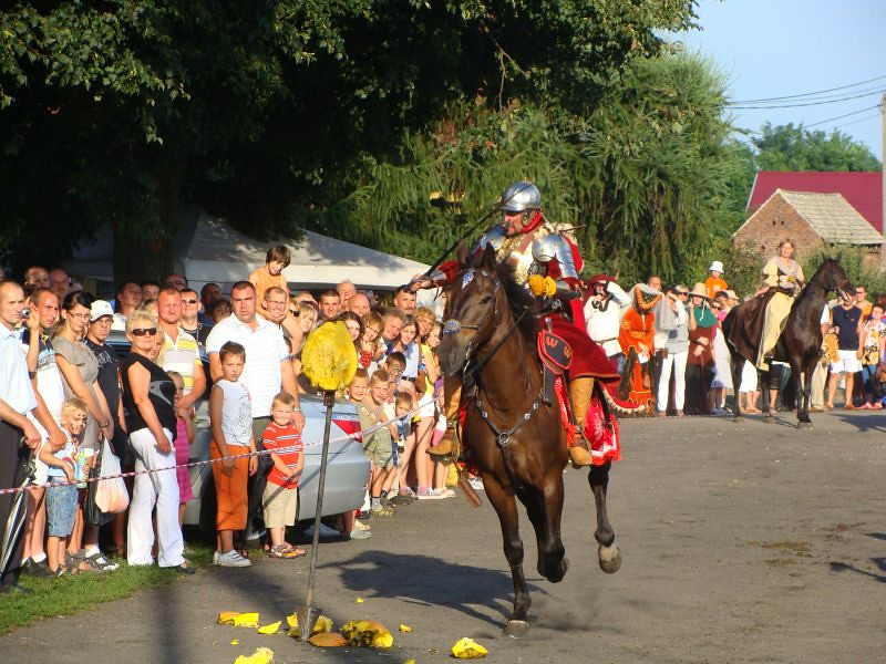Turniej rycerski 22.08.2010 091