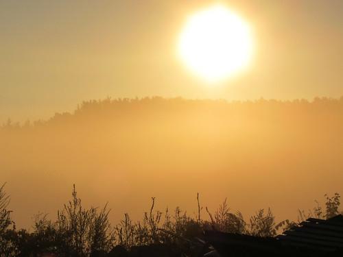 Sun Through Fog - Lunenburg MA