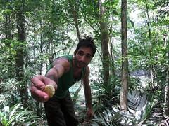 Panama Jungle (46)