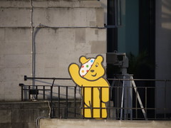 Pudsey on Broadcasting House