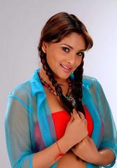 Indian Actress Ramya Hot Sexy Images Set-2  (13)