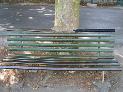 Tree eating a bench in Lazio, Italy