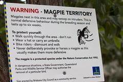 Serious Warning