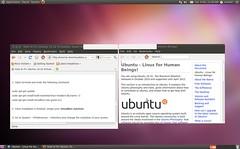 Ubuntu 10.10 Release Candidate